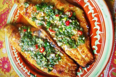 Grilled Catfish with Fresh Herb Chimichurri
