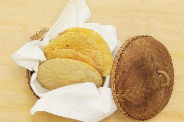 How to Make Mexican Corn Tortillas