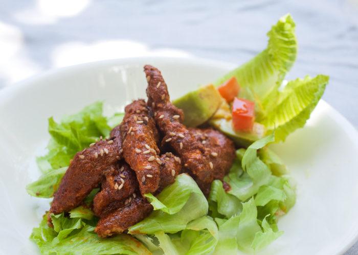 Pollo en Salsa de Cacahuate (Chicken in Peanut Sauce), photo by Sonia Mendez Garcia