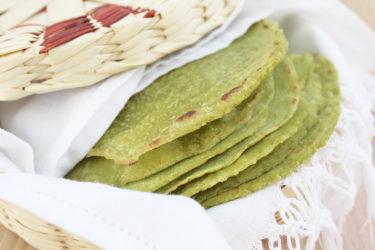 Tortillas de Nopal Recipe - How to Make Cactus Tortillas