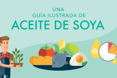 Guía ilustrada: Aceite de soya, photo by Hispanic Kitchen